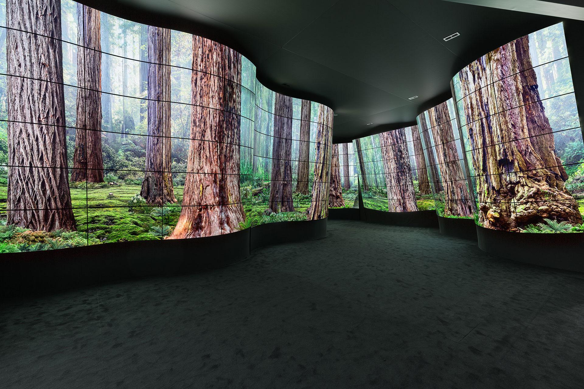 Murs d'écrans